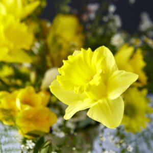 flower shop composizione floreale dettaglio narciso Domitilla Baldeschi flower designer laboratorio creativo milano